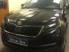 Бронирование порогов а/м Škoda Kodiaq.jpg