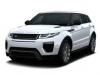 Land Rover Range Rover Evoque tonirovanie stekol