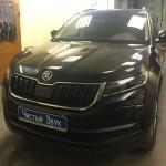 Тонирование стекол ам Škoda Kodiaq. (1)